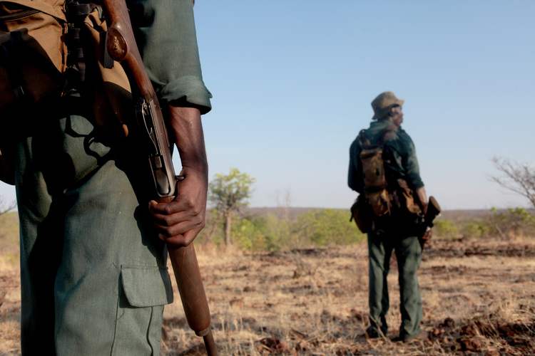 The Green Army, an anti poaching unit in Zimbabwe, run by two former members of Australian Special Forces.