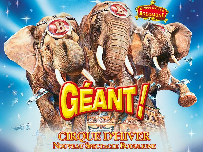 Circus-2016-Wildlifeangel
