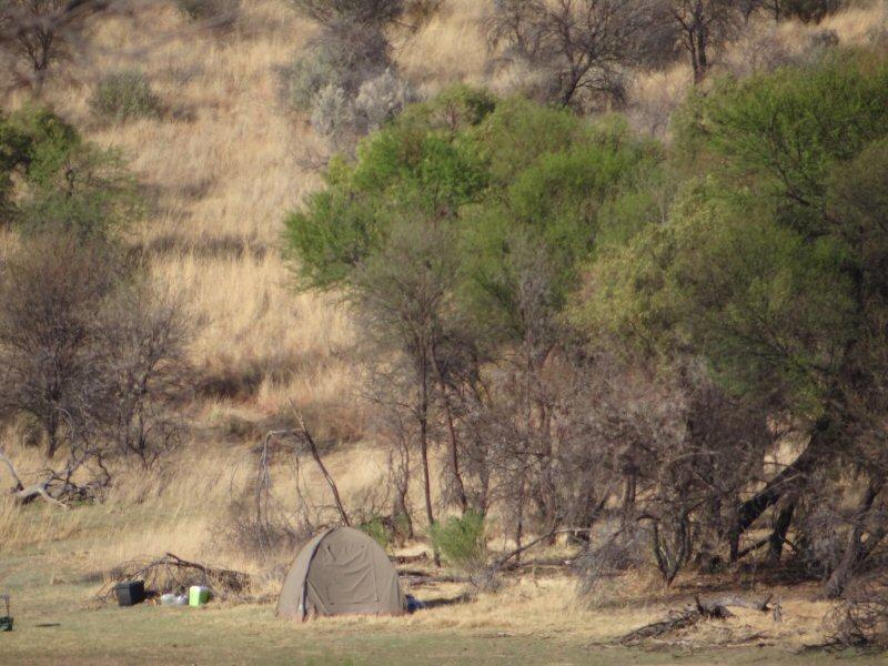 OZ-tent