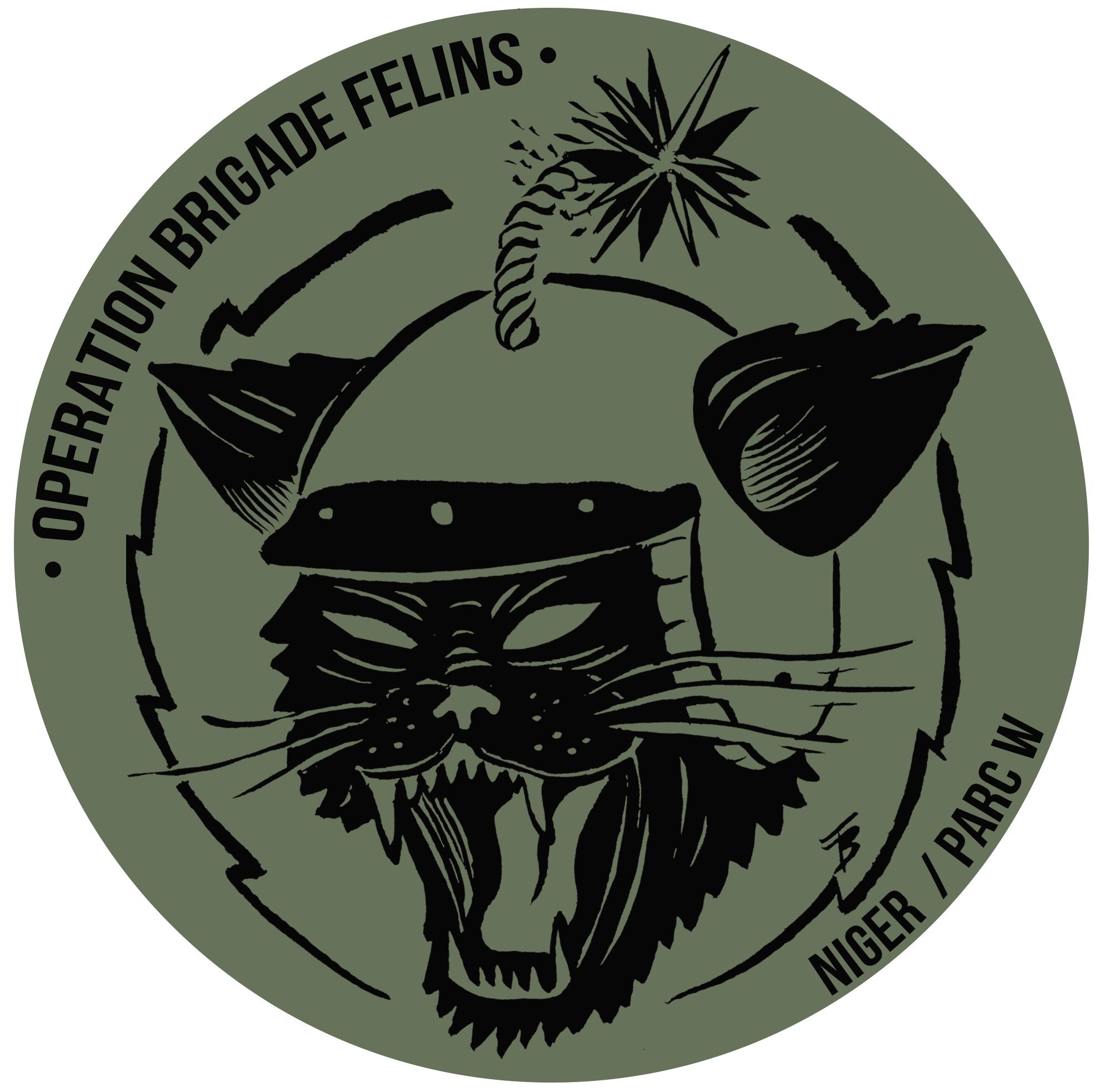 Operationbrigadefelins