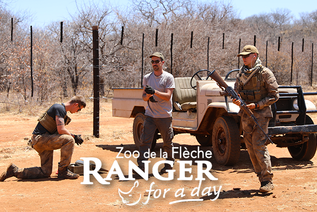 Ranger-for-a-day-home