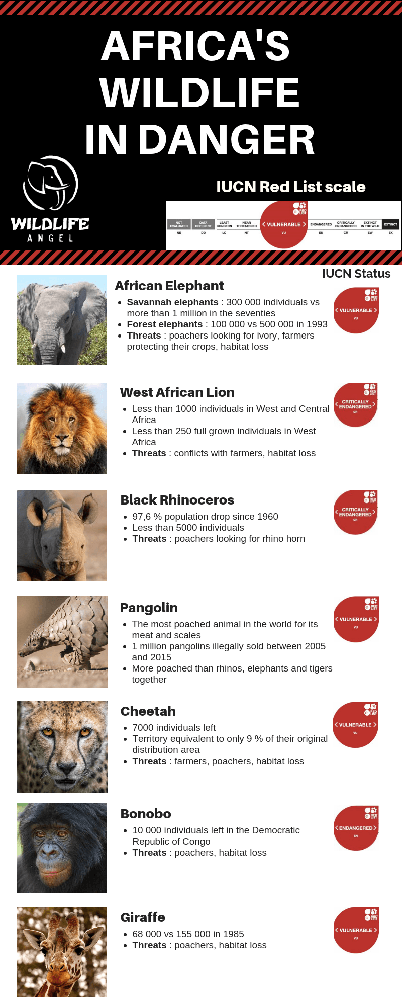 Endangered Africa's Wildlife