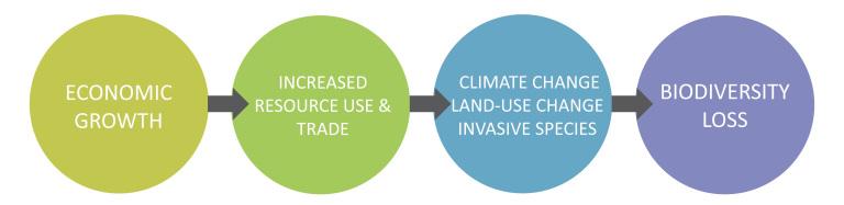 développement croissance et conservation de la nature
