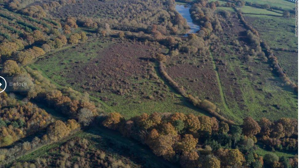 Vue aérienne de la ferme Knepp après le réensauvagement.
