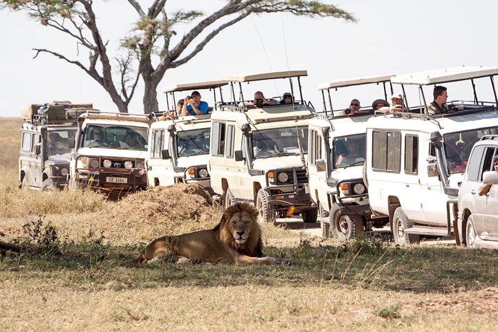 tourisme-afrique-colonialisme